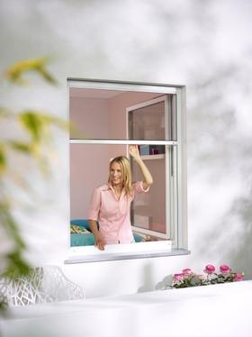 Rollo an Fenster
