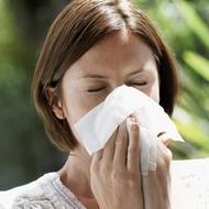 Pollenschutz